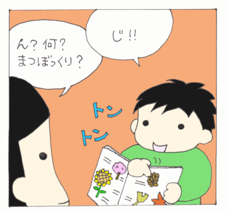 Matsu4