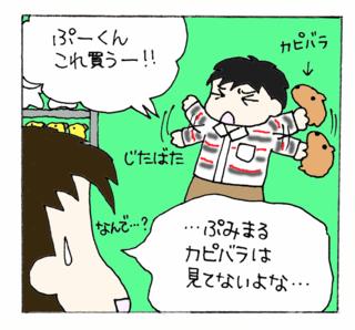 Asahiyama12