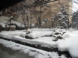 Hokkaidophoto2