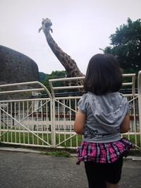 Kisei2012photo1