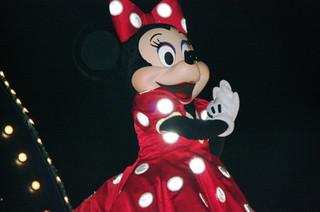 Disneyphoto6